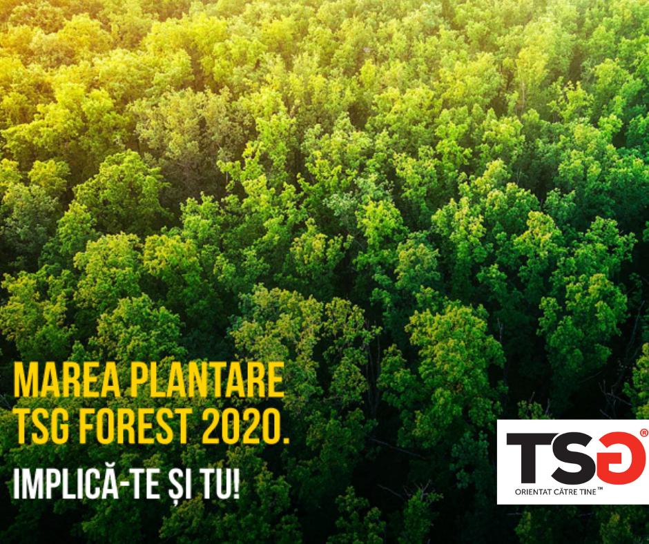 2019.12 Marea Plantare TSG Forest 2020. Implica-te si tu!